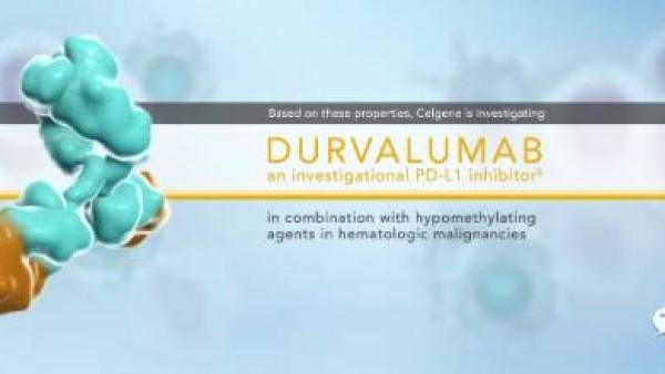 快讯丨FDA批准第五个PD-1类药物-Durvalumab