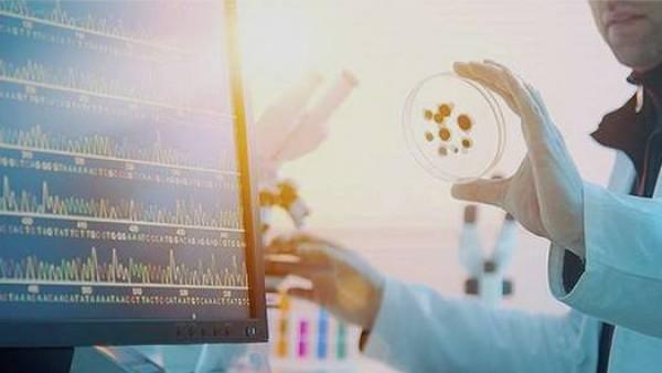 盘点肾癌的基因突变和治疗药物