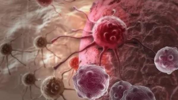 什么是肿瘤?什么是癌症?有什么区别?一文带您了解